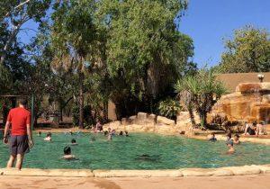 バカンス、プールで泳ぐ風景